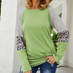 Green Striped Leopard Longsleeve Top